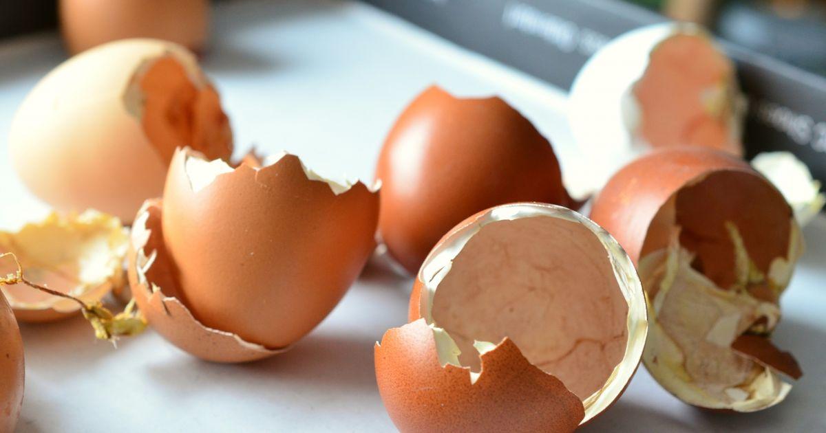 So isst man Eierschalen